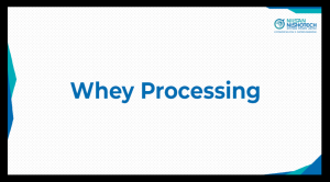 Whey Processing